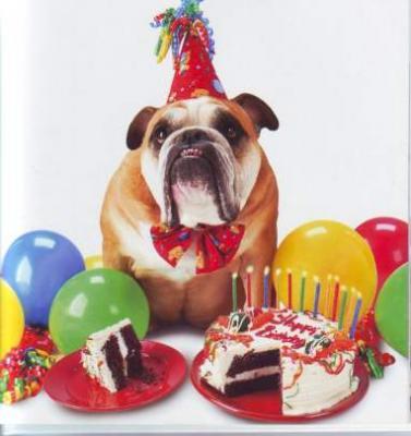 20090619092810-bb-zelda-happy-birthday.jpg